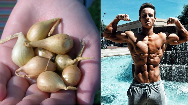 By testosterone results increase onions 300 Onions Increase